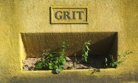 Yellow Grit