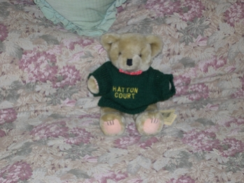 Hatton Teddy