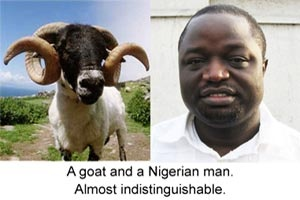 Goat and Man